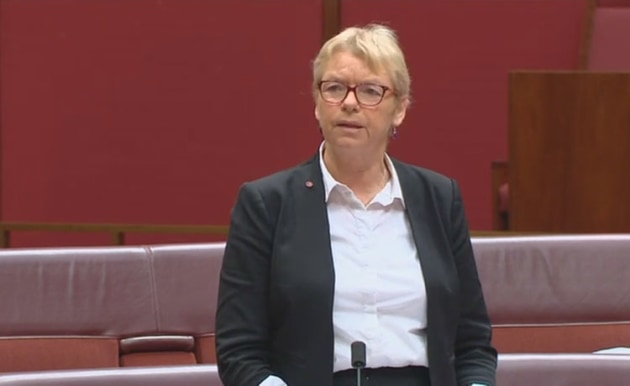 Greens' Senator Janet Rice speaks against the Civil Aviation Amendment Bill in the Senate on 22 July 2019. (still from parliamentary feed)