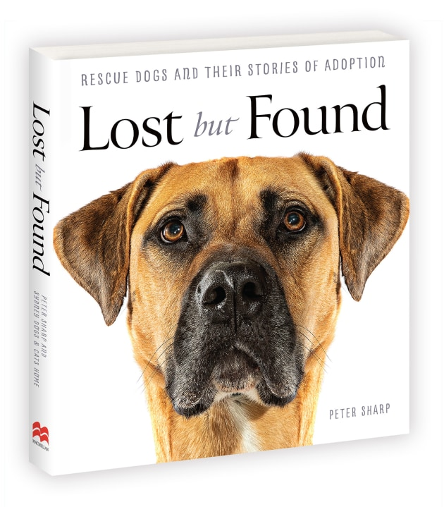Lost but Found by Peter Sharp.