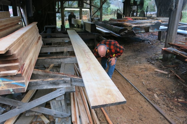 Milled-timber-straight-off-the-saw-bench