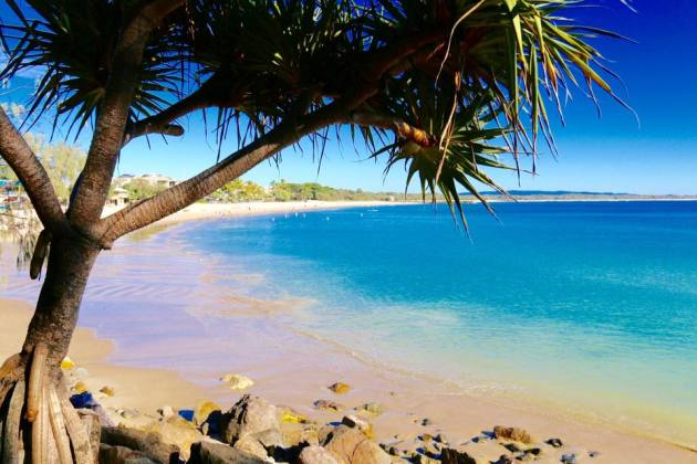 Noosa's iconic Laguna Bay - one of Australia's best looking beaches.
