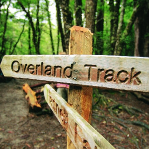Adventure Seekers Wilderness Tasmania offers guided walks on the Overland Track. TQ.