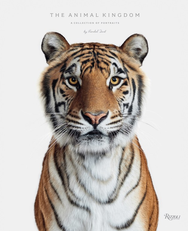 1st Place / Book. The Animal Kingdom: A Collection of Portraits.