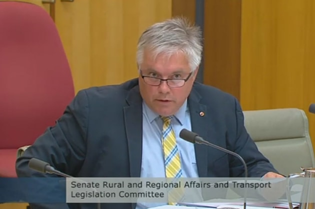 Senator Rex Patrick championed the cause of Angel Flight in Senate Estimates earlier this year. (still from Parliament House feed)