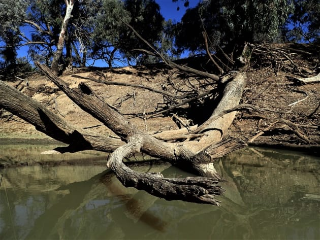 Fishing Outback NSW: signs of recovery? - Fishing World