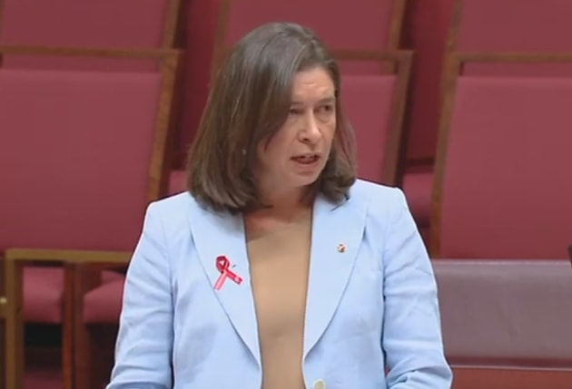 Senator Susan McDonald addresses the senate over CASA's rejection of the RRAT recommendation on Angel Flight maintenance requirements. (still from Parliament House feed)