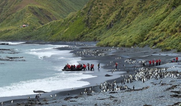Ponant Sub-Antarctic Islands