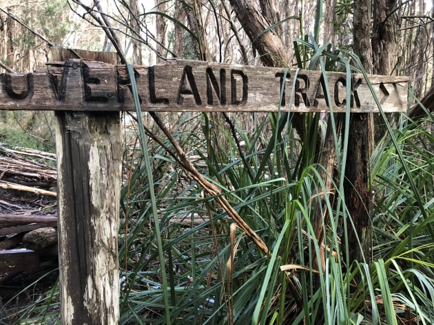 Welcome to the Overland Track.