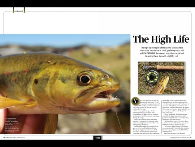 The high alpine region of the Snowy Mountains is home to an abundance of small, yet feisty trout, and as Ben Caddaye discovered, much fun can be had targeting these fish with a light fly rod.