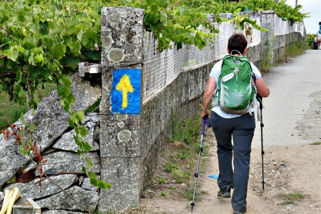 On the Portugal Camino