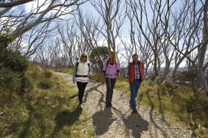 Experience Vic's parks through the eyes of a volunteer