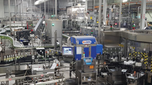 Changing patterns of bottling line behaviour