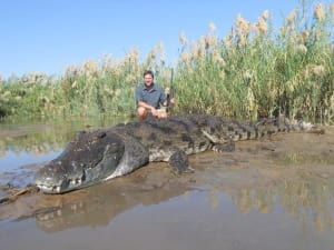 NT Government Backs Crocodile Hunting