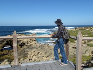 Rottnest is the gem in Perth's crown