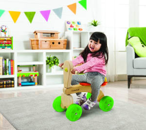 EverEarth Trike from Australian Toy Sales
