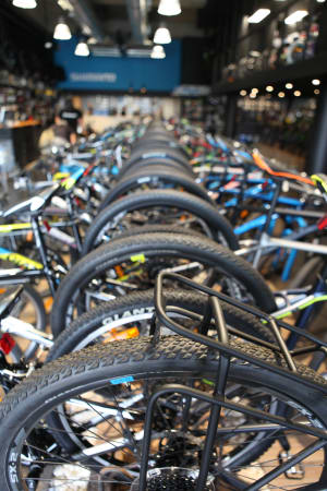 Recovery in Bicycle Imports Continues for February