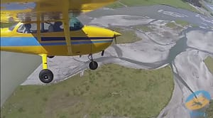 FRIDAY FLYING VIDEO: Flyinn NZ