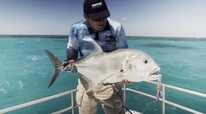 VIDEO: Giant trevally on the flats