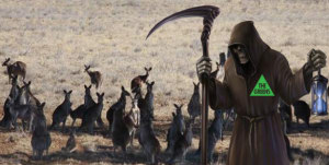 Greens the Grim Reaper to the Australian Kangaroo Industry