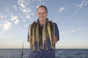 Over 600 King George whiting now tagged