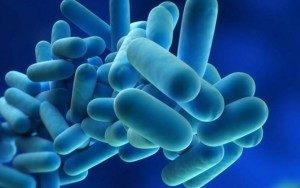 Debunking the Legionella cooling tower myth