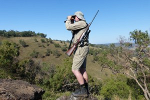 Which Binocular For Big Game Hunting