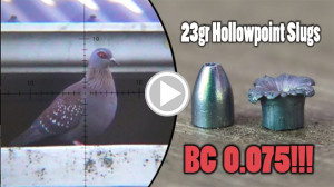 Pigeon hunting with hollowpoint slugs