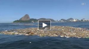 49er sailors crash into floating rubbish in Rio 2016 Olympic course