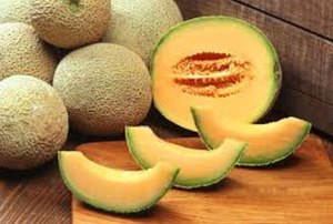 Rockmelon farm named as industry counts cost