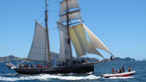 Tall ship named sailor of the year