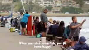 VIDEO: Fishing Pier 2 in Sydney Harbour