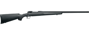 Considering  A .204 Ruger