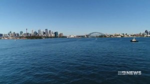 VIDEO: Sydney Harbour on the mend
