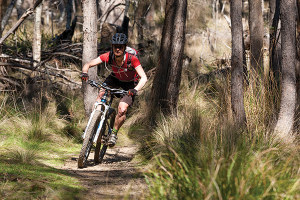 Mountain Biking in Hollybank and Derby Tasmania