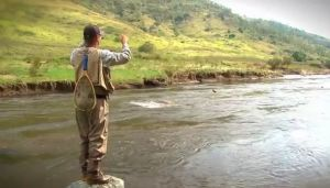 VIDEO: Teaser - Luring for wild trout