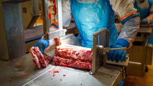 Forums cut to the heart of meat processing