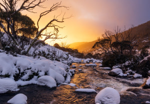 Photo tip of the week: Capturing winter in the Snowy mountains