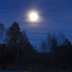 Astroblog: Winter solstice and Full Moon