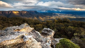 Blue Mountains Radiata Plateau to be protected forever