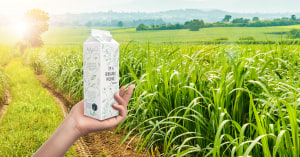 Tetra Pak achieves sugar cane transparency