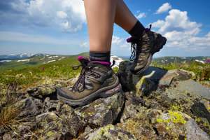 Seven things you need to start bushwalking