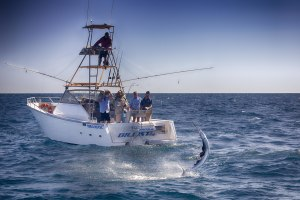 Bucket list Broome sailfish
