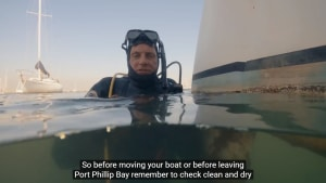 VIDEO: Prevent the spread of marine pests