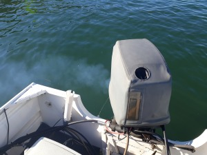 Fish Facts: Outboard issues
