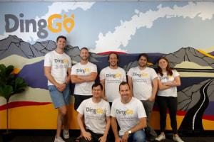 Government grant fuels DingGo growth