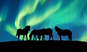 The art of the Aurora: Shooting tips for the world's best light show