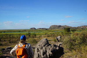 Kakadu walk showcases NT's ancient beauty