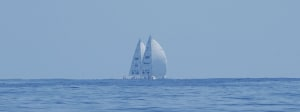 Frustratingly exciting as Clipper fleet drifts together near Panama finish