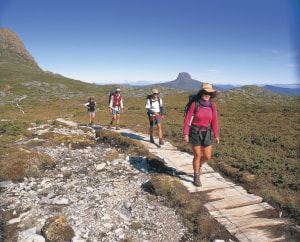 Overland Track summer bookings open open July 1