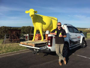 Sungold milk turns bottles fluoro for tradies