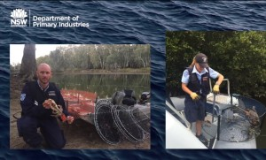 Want to become a fisheries officer?